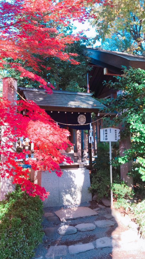 紅葉~猿田彦神社~